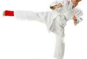 ورزش جودو